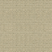 Kravet 31877 Enthusiasm 11 Platinum